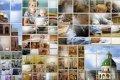 На Кубани стартует проект «Поезд творческих идей – 2012»